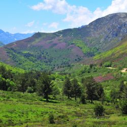 Marmot Tours Classic Cols of the Picos Cycling Holiday- Autumn Colours