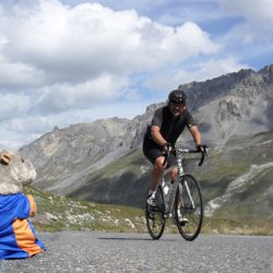 Marmot Tours Raid Alpine Cycling Challenge - Margo supports
