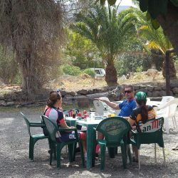 Cafe stop in the shade of a palm tree