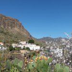 Village, Marmot Tours Classic Cols of Gran Canaria