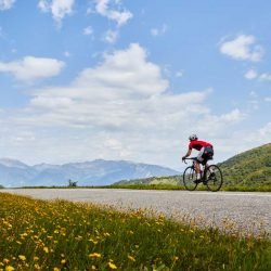 Road cyclist cycling through an Alpine meadow in the French Alps