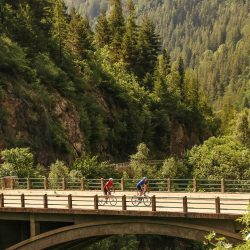 Cyclists cross bridge on Bonnette descent